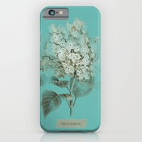 iPhone & iPod Case featuring HYDRANGEA 3 by mel @ my postcard heaven