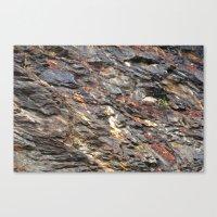 Rocky Mountain Texture  Canvas Print