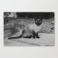 Canvas Print featuring Meow by Violetsilence