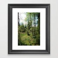 Hidden forest Framed Art Print