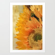 Here Comes the Sun -- Sunflower Botanical Art Print
