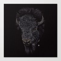 Bison / Buffalo Canvas Print