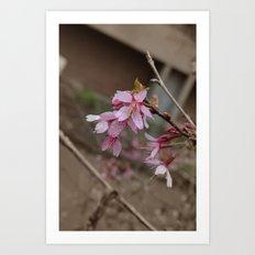 It's Spring Ya'll!! Art Print