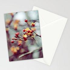Frozen Fruit Stationery Cards