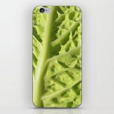 green savoy cabbage II iPhone & iPod Skin