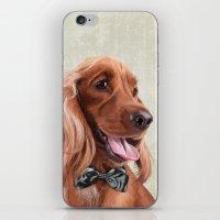 Mr. English Cocker Spaniel iPhone & iPod Skin