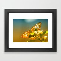 White Peacock Butterfly Framed Art Print