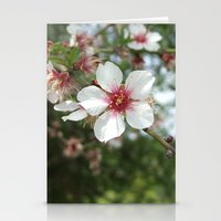 Blossom Flower Stationery Cards