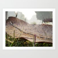 Dew Drops On A Fallen Le… Art Print