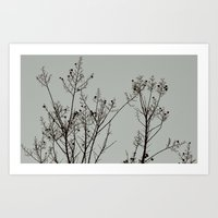 Looking Up-Tree In Winte… Art Print