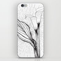 Lily In Black And White iPhone & iPod Skin