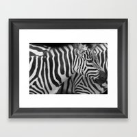 Stripes in a line... Framed Art Print