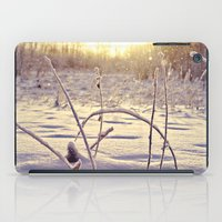 Alaskan Snowfall iPad Case