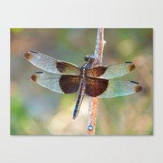 Dragonfly X Canvas Print