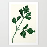 Parsely Art Print