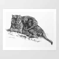 Tiger and Cub G023 Art Print