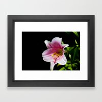 Big Lily Framed Art Print