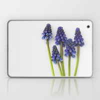 Muscari - Blue Grape - J… Laptop & iPad Skin