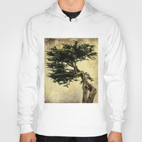 Cypress Tree Hoody