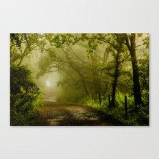 Misty Woodland Lane Canvas Print