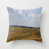 Natural Colors (2) Throw Pillow