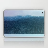 Oregon Winter Laptop & iPad Skin