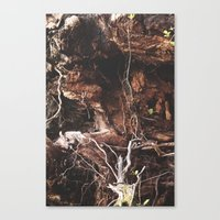 Root Of It All Canvas Print