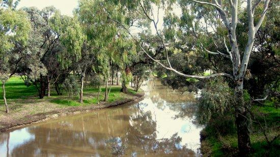 Australian Landscapes Art Print