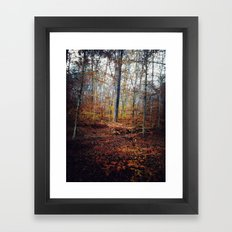 explore color Framed Art Print