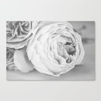 Early Roses - Black & Wh… Canvas Print