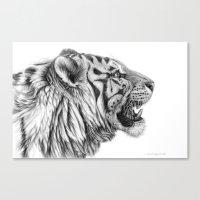 White Tiger Profile Canvas Print