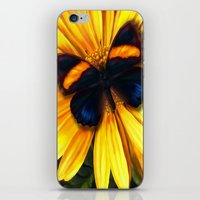 Butterfly on yellow iPhone & iPod Skin