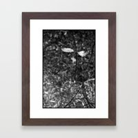 sprouting.. Framed Art Print