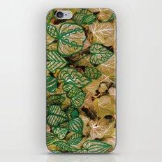 leaves evolved 3 iPhone & iPod Skin