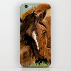 Horses - Mare and Foal iPhone & iPod Skin
