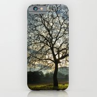 iPhone & iPod Case featuring Tree by Jesús M.Chamizo