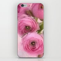 Pink Ranunculus iPhone & iPod Skin