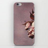 Quiet Beauty iPhone & iPod Skin