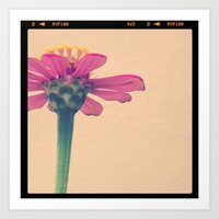 FLOWER 017 Art Print