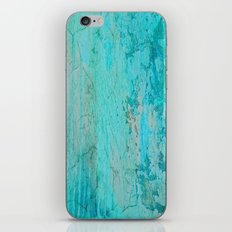 All Cracked Up iPhone & iPod Skin