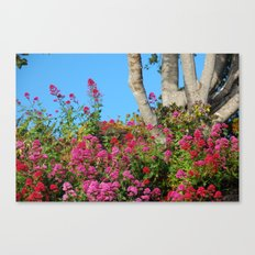 Flowers Around a Tree, Yachats, Oregon Canvas Print
