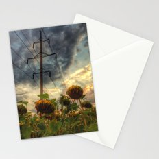field of faded sunflowers  Stationery Cards