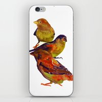 Sparrows iPhone & iPod Skin