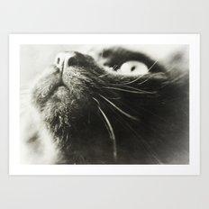 I See You (Sammie) Art Print