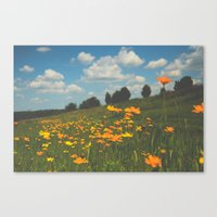 Dreaming In A Summer Fie… Canvas Print