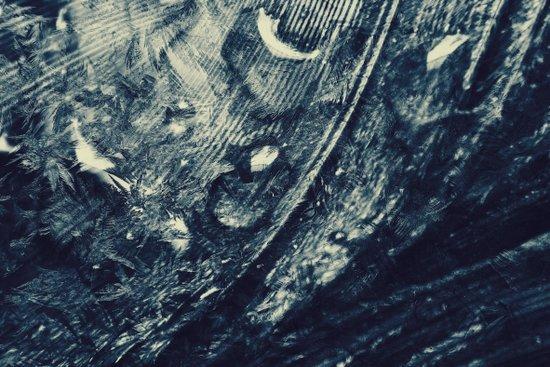 Raven Frost Art Print