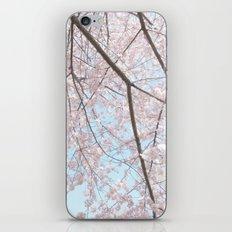 Vintage pink tree iPhone & iPod Skin