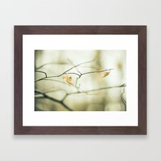 Land Awakening Framed Art Print