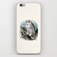 Wise Man iPhone & iPod Skin