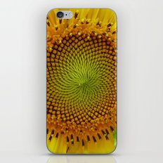 Journey to the Center of the Sunflower iPhone & iPod Skin